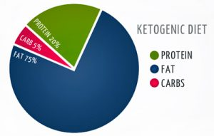 Macronutrient ratios for ketogenic diet