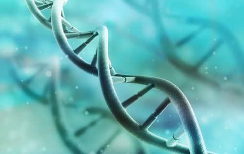 Keto Genes