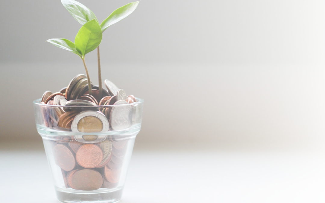The Cash Pay Way – 3 Key Secrets to Rapid Revenue Generation in 2021